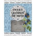 Sweet_grandson_8x11_book-001_small