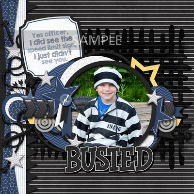 Ap-albumstorememberpolice2