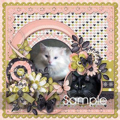 Isl_sample_8