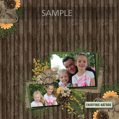 A2r-007_sample