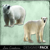 Polar_bears_medium