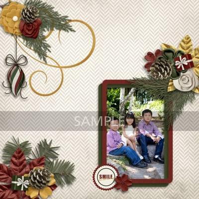 Ct_happyfamily_k2
