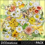 Daisies___dewdrops_medium