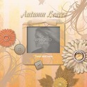 Autumn_leaves_temp-001_small