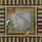 Love_of_nature_12x12_photobook-001_medium