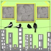 Birds_of_a_feather_temp-001_medium