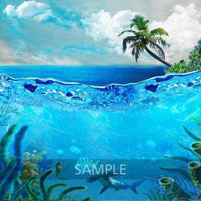 Coral_reef3