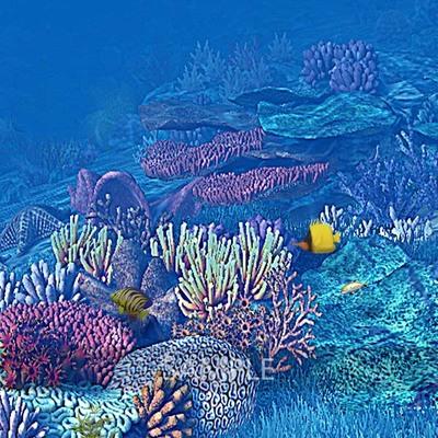 Wonderful_ocean2
