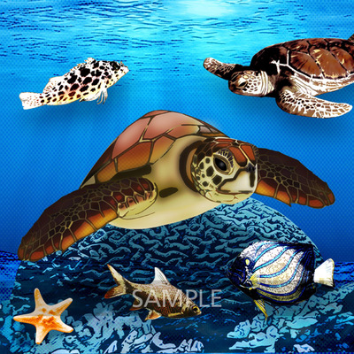 Turtles_and_fishes2