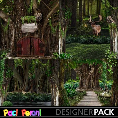 Enchanted_forest1_2