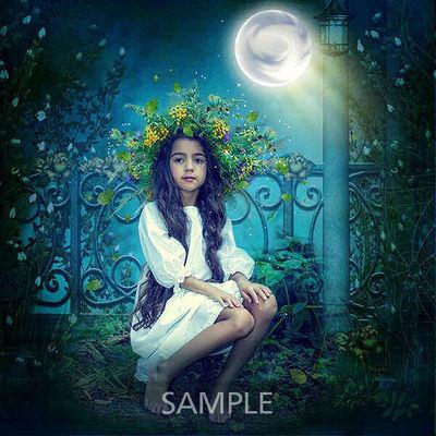 Moonlight_lo6