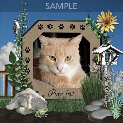 Cat_s_r_us_frames-02