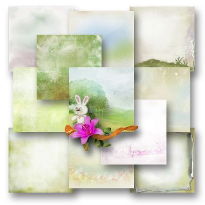 Butterflydsign_eggsandflowers_pap
