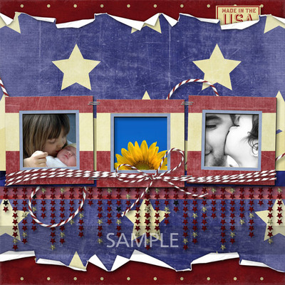 Made_in_the_usa-008