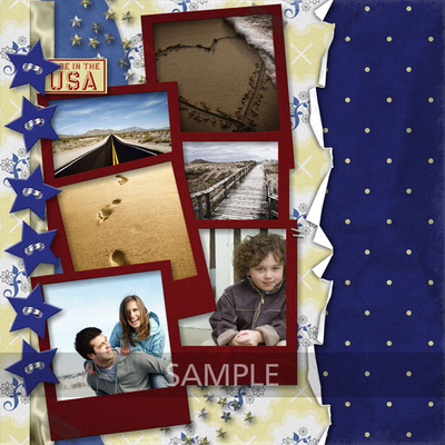 Made_in_the_usa-009