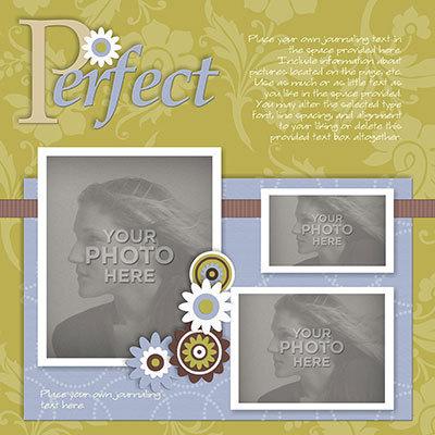 Perfection_temp-003