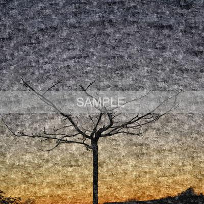 Msp_cu_paper_mix25_sampler2