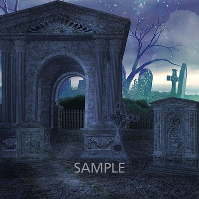Graveyard_in_the_forest2