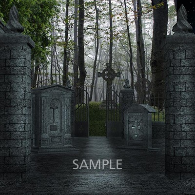 Graveyard_in_the_forest4