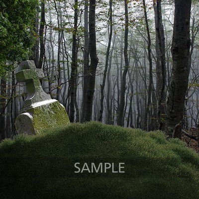 Graveyard_in_the_forest5