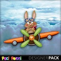 Bunny_on_plane_small