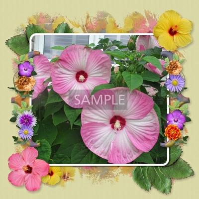 Floral_infinity_bundle-011