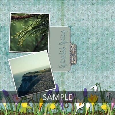 Tenderness_12x12_album-010_copy
