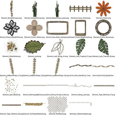 Cs_walkonthewildside-elements