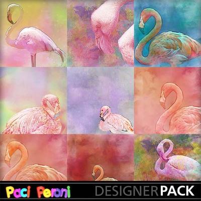 Beautiful_flamingos2