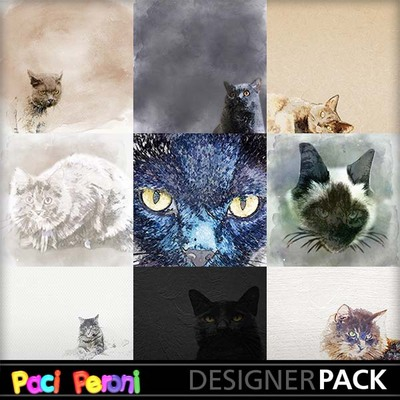 Amazing_cats1