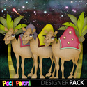 Camels_small