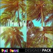 Sun_and_coconuts_medium
