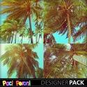 Sun_and_coconuts_small