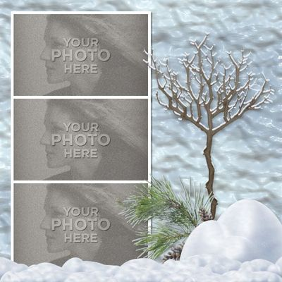 Winter_beauty12x12_photobook-012