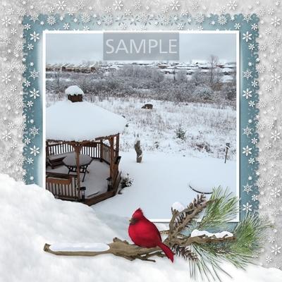 Winter_beauty-06