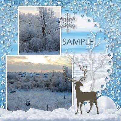 Winter_beauty-07