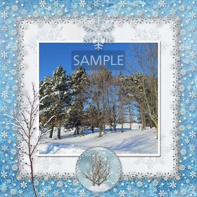 Winter_beauty-08