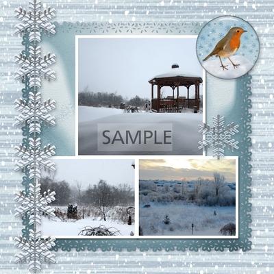 Winter_beauty-09