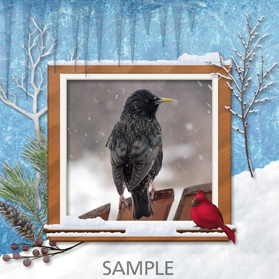 Winter_beauty_frames-02