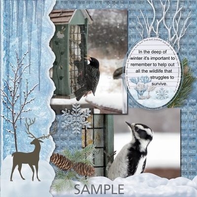 Winter_beauty_bundle-012
