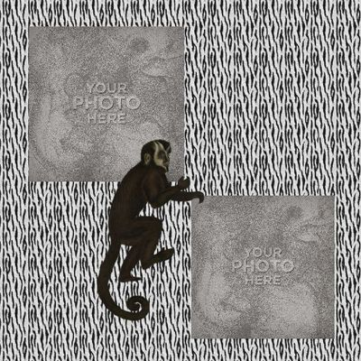 Wildsofafrica-021