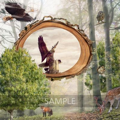 Kjd_forestmist_lo1_sample