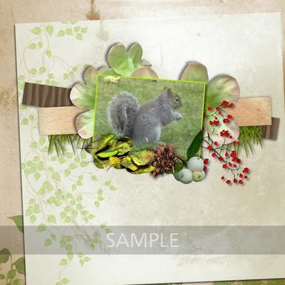 Lw_forestmist_lo1_sample