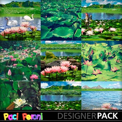 Water_lilies_pond2