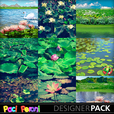 Water_lilies_pond3