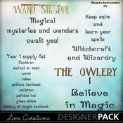 Wizardschool11_medium