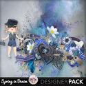 Springin_denimpv_small