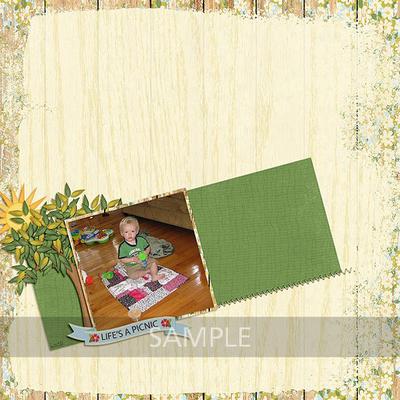 Life_s_a_picnic_10