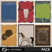Rhinestone_cowboy_journals_medium