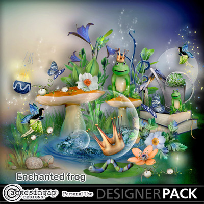 Enchanted_frog-01